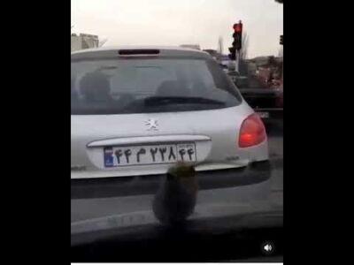 توضیحات استانداری تهران در مورد بارش بادمجان از آسمان تهران