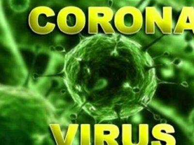 """فقط """"5 گرم ویروس کرونا"""" جهان را تعطیل کرد"""