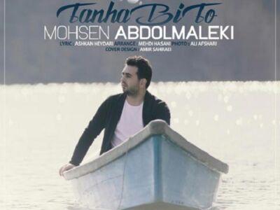 دانلود آهنگ جدید محسن عبدالمالکی به نام تنها بی تو